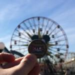 Disneyland / California Adventure Quit For Fire10257