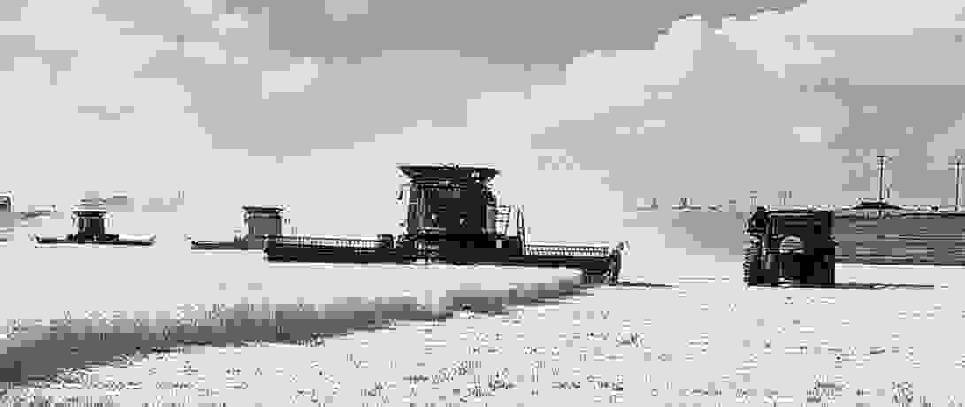 Photo of Harvest the HOFer