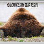 Bear3454 – 100 Days of Freedom