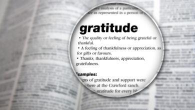 Gratitude Defintion